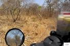 Burkina Faso copy 01 (160)