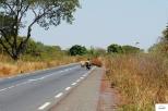 Burkina Faso copy 01 (174)