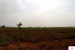 Burkina Faso copy 01 (253)