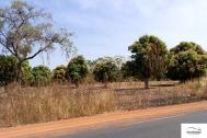 Burkina Faso copy 01 (87)