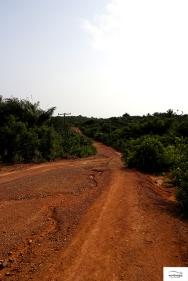 Off road 03