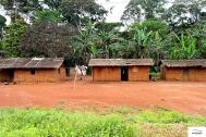 Υπέροχα τα χωριουδάκια/οικισμοί (2-3 σπίτια) στα νότια του Καμερούν.