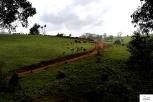 On the way to Yaounde. / Εικόνες από τη διαδρομή ως τη Yaounde.