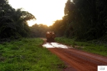 The moment I entered Congo Brazza, the rainy season had just started so I was given the opportunity to test all the electronic assistance of my vespa! (ASR, ABS, Traction Control) The mud-baths started from the last few kilometers in Cameroon! / Ευτυχώς μπήκα στο πρώτο Κονγκό όταν είχε ξεκινήσει η περίοδος των βροχών κι έτσι είχα την ευκαιρία να δοκιμάσω όλα τα ηλεκτρονικά βοηθήματα (ASR, ABS, Traction Control) της βέσπας!10-16-Από τα τελευταία χιλιόμετρα στο Καμερούν άρχισαν τα λασπόλουτρα.