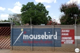 Mousebird backpackers Tsumeb