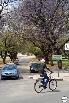 Στους δρόμους του Tsumeb