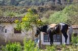Pictures from La Higuera / Εικόνες από την La Higuera